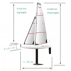 Big Fast Racing RC Sailing boat for Adults Dragon Force 65