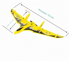 Cool Mini RTF RC Flying Delta Wing for Sale Inv Ader 6104